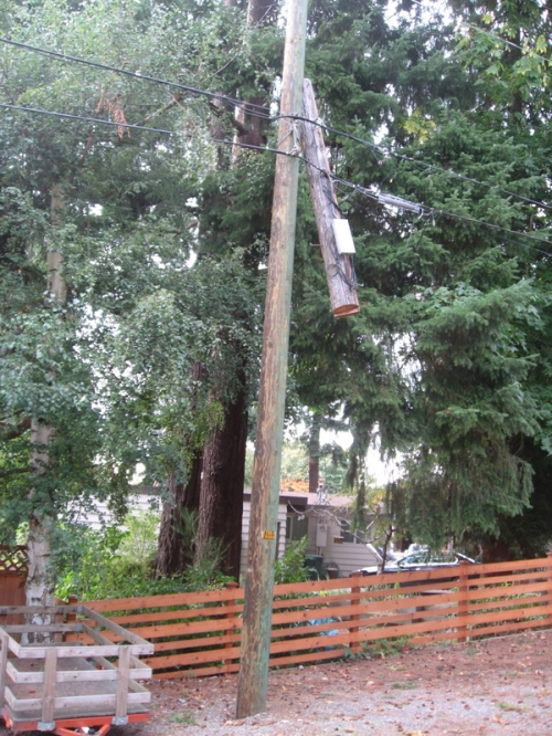 hanging_pole_86th_ave